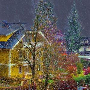 FIRST SNOW #8