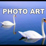 Art Photos